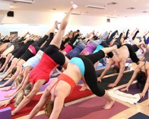 Neutral Bay Yoga Studio