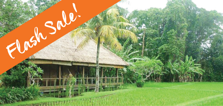 Bali Retreat Sale