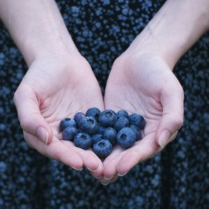 Brain Health Blueberries