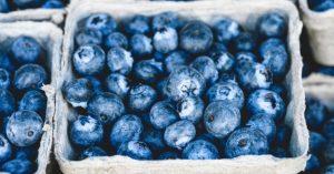 Blueberries brain health