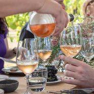 Hunter Valley Yoga & Wine Weekender